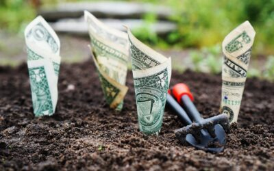 Pregled neposrednih tujih investicij