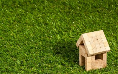An Amendment to the Law of Property Code